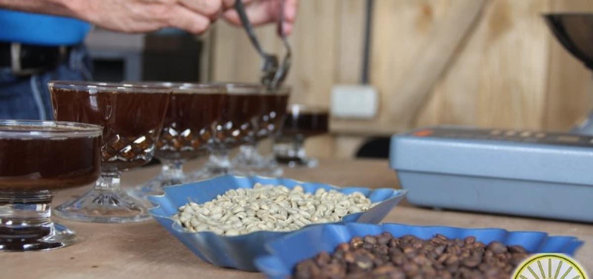 COOPEASSA R.L.: café de Pérez Zeledón para todo el mundo