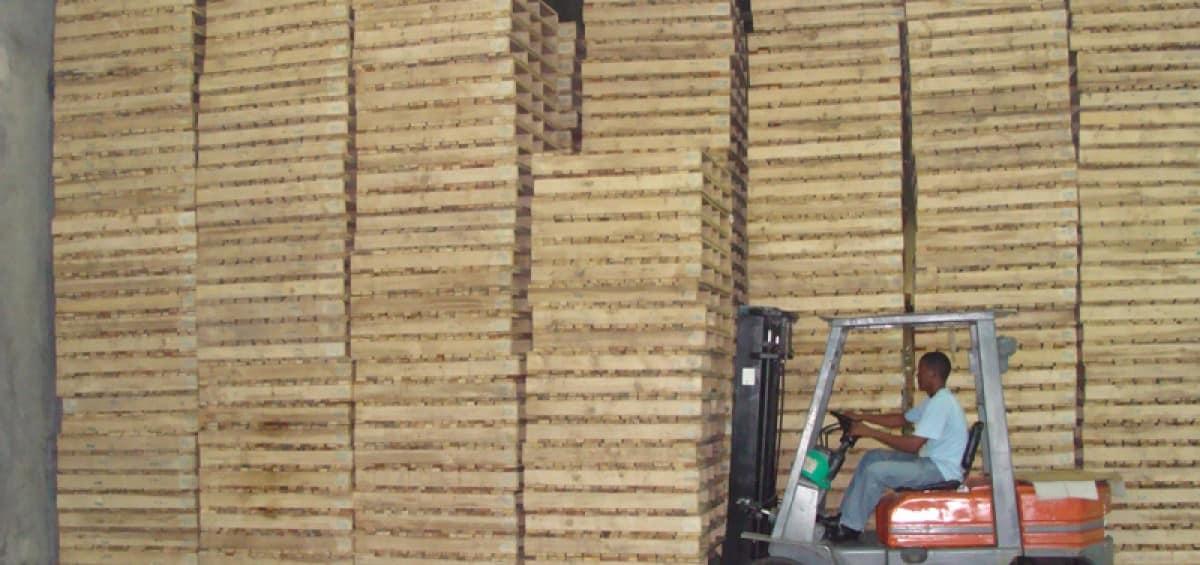 Green Pallet, llevando tarimas a Costa Rica y Panamá